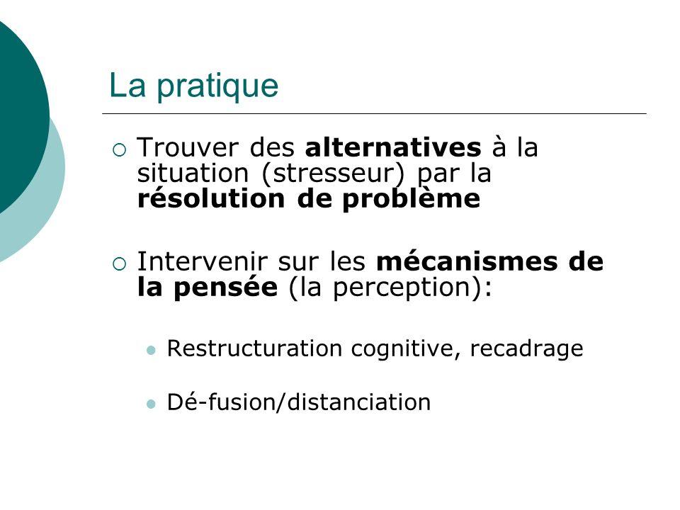 La pratique Trouver des alternatives à la situation (stresseur) par la résolution de problème.