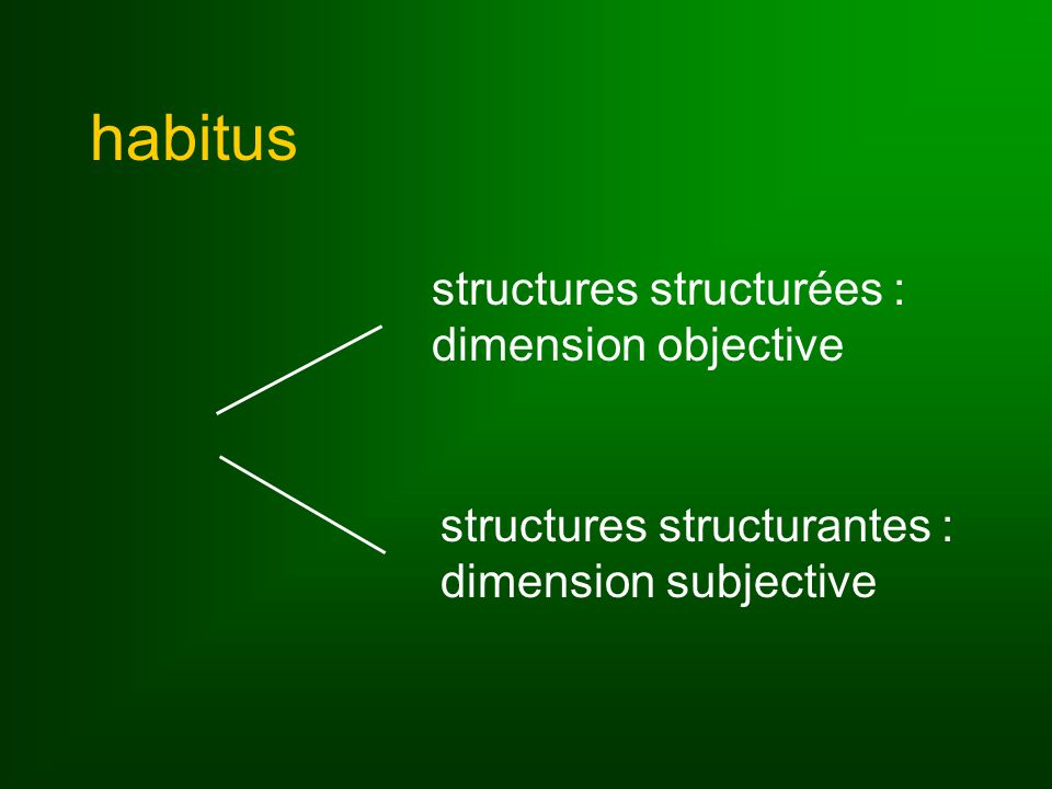 habitus structures structurées : dimension objective