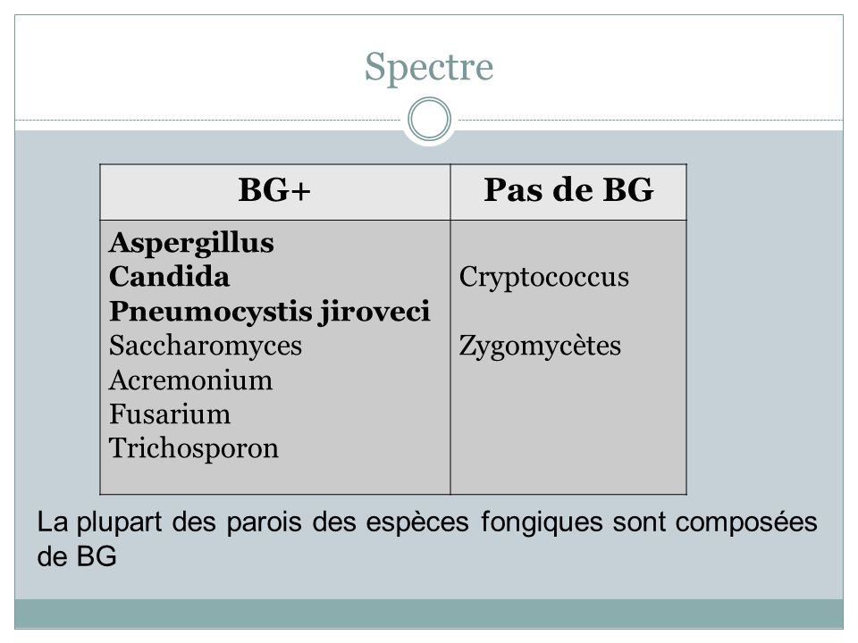 Spectre BG+ Pas de BG Aspergillus Candida Pneumocystis jiroveci