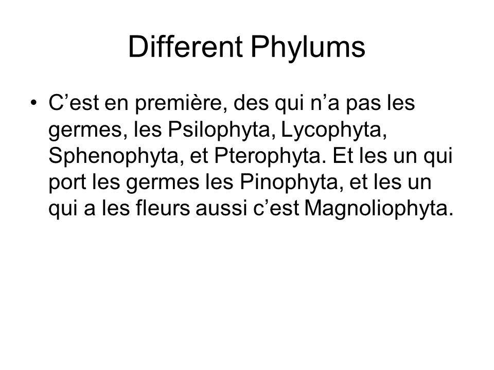 Different Phylums