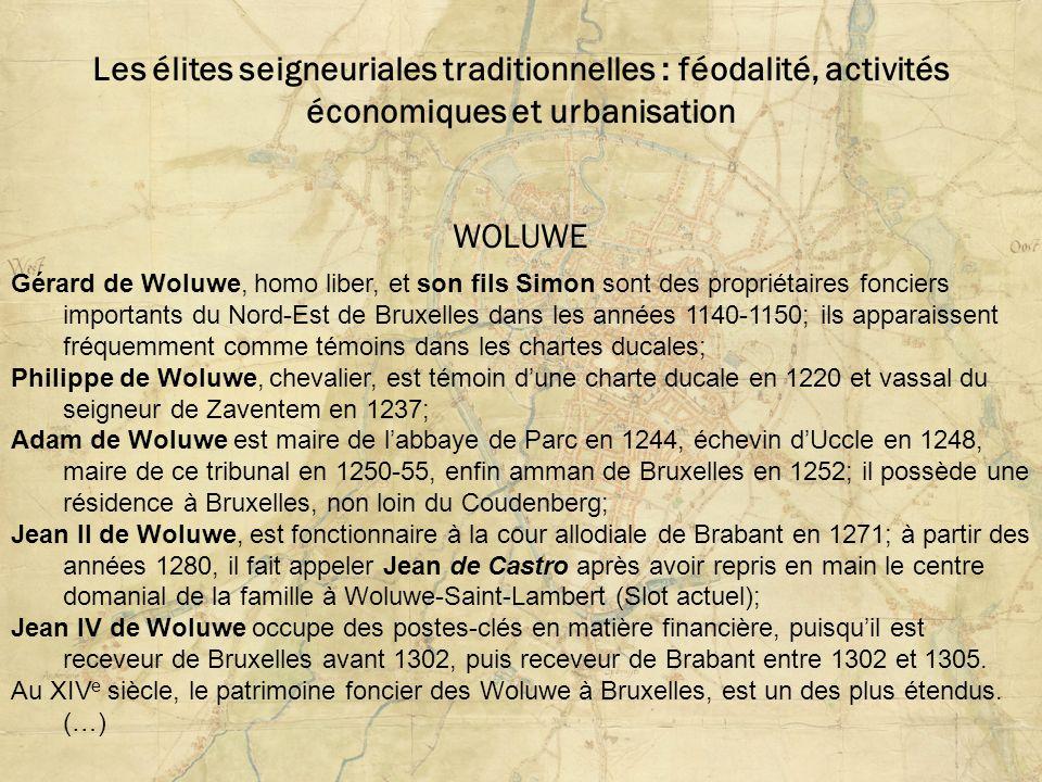 Les élites seigneuriales traditionnelles : féodalité, activités économiques et urbanisation WOLUWE