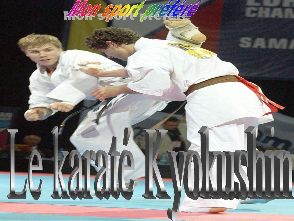 Mon sport préféré Le karaté Kyokushin
