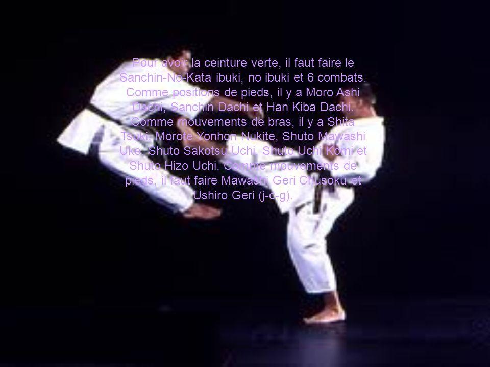 Pour avoir la ceinture verte, il faut faire le Sanchin-No-Kata ibuki, no ibuki et 6 combats.