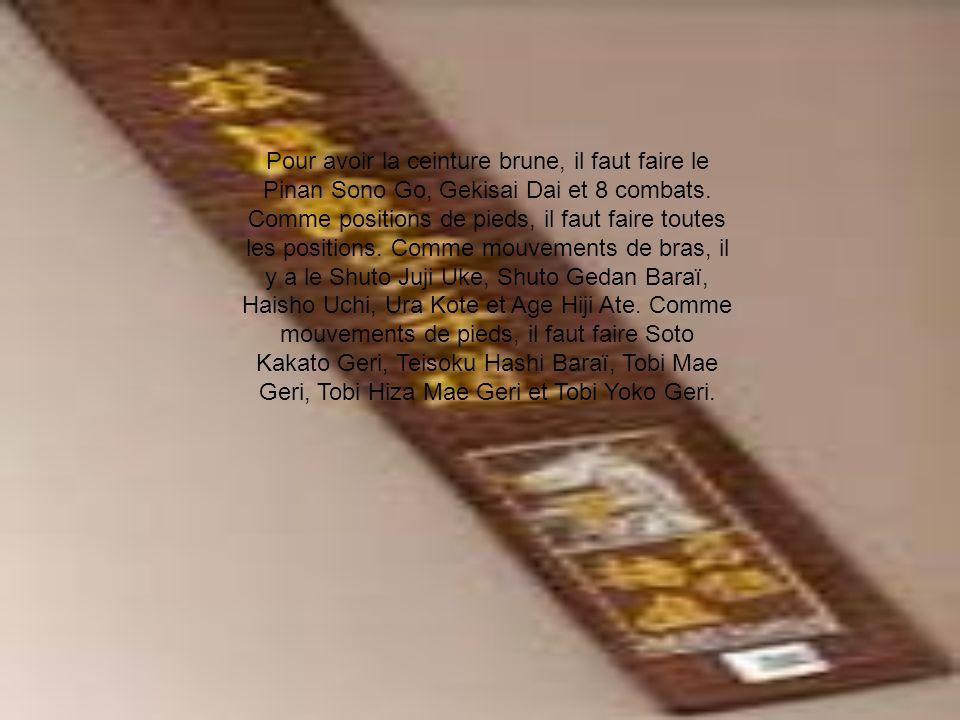 Pour avoir la ceinture brune, il faut faire le Pinan Sono Go, Gekisai Dai et 8 combats.
