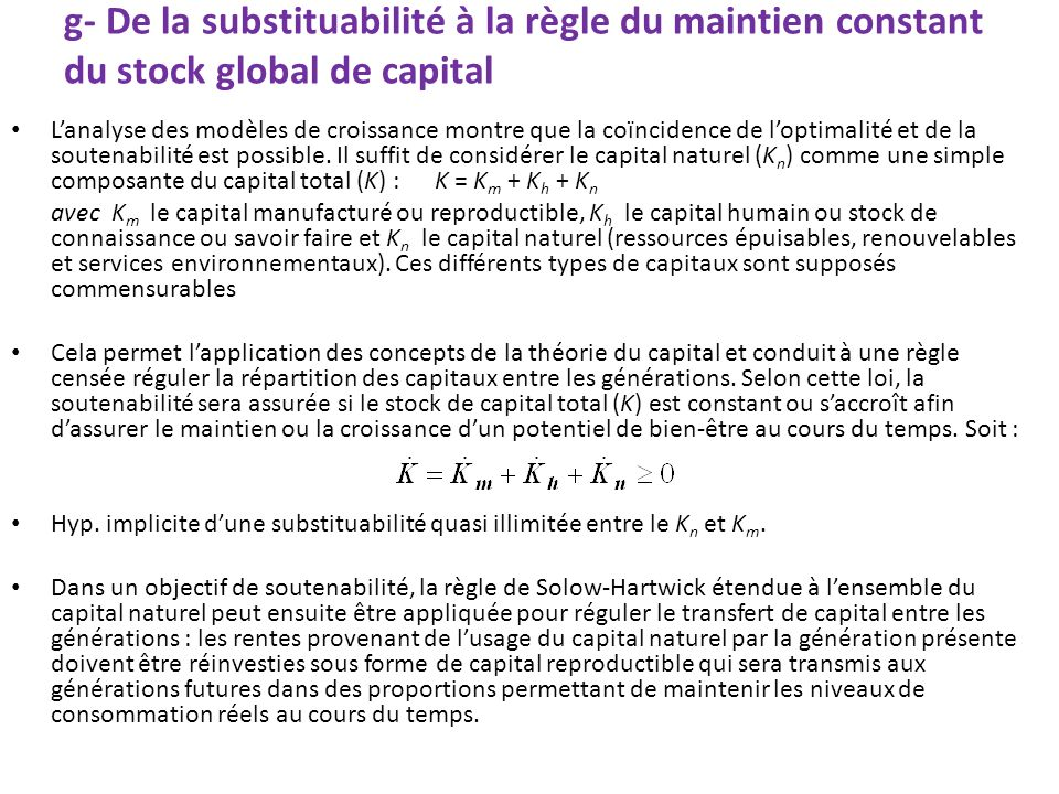 g- De la substituabilité à la règle du maintien constant du stock global de capital