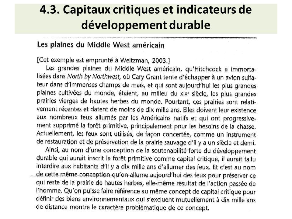 4.3. Capitaux critiques et indicateurs de développement durable