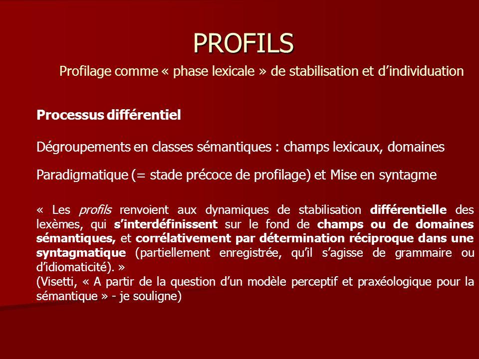 Profilage comme « phase lexicale » de stabilisation et d'individuation