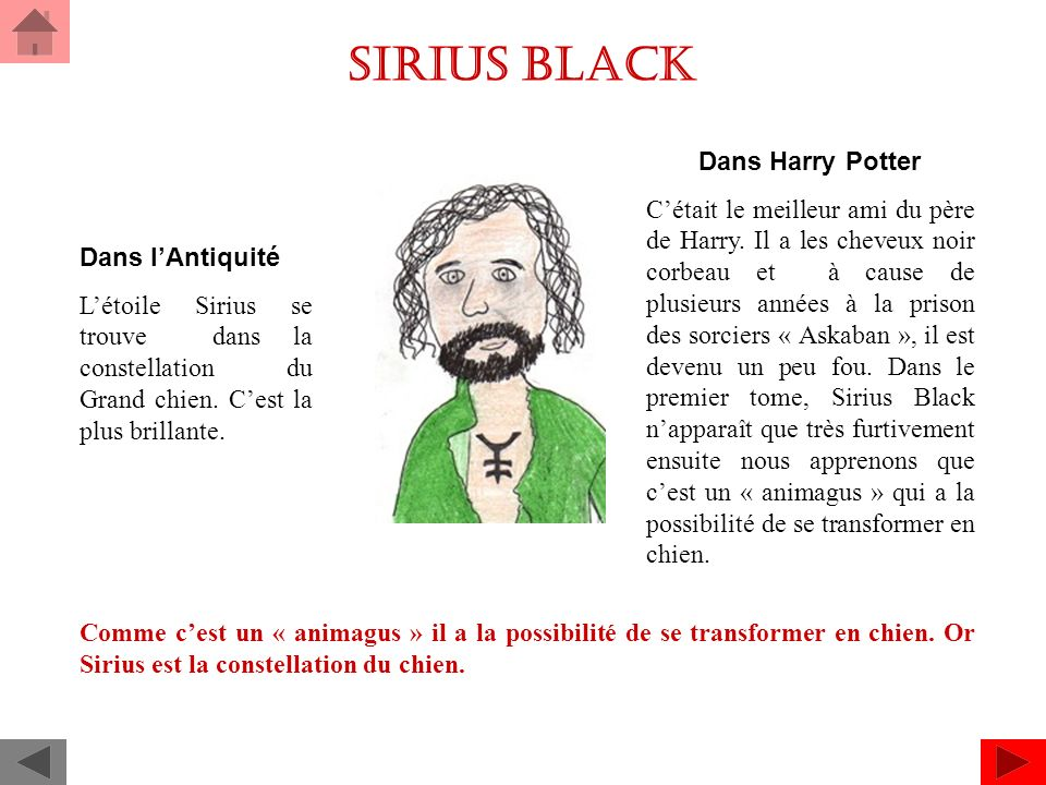Sirius black Dans Harry Potter