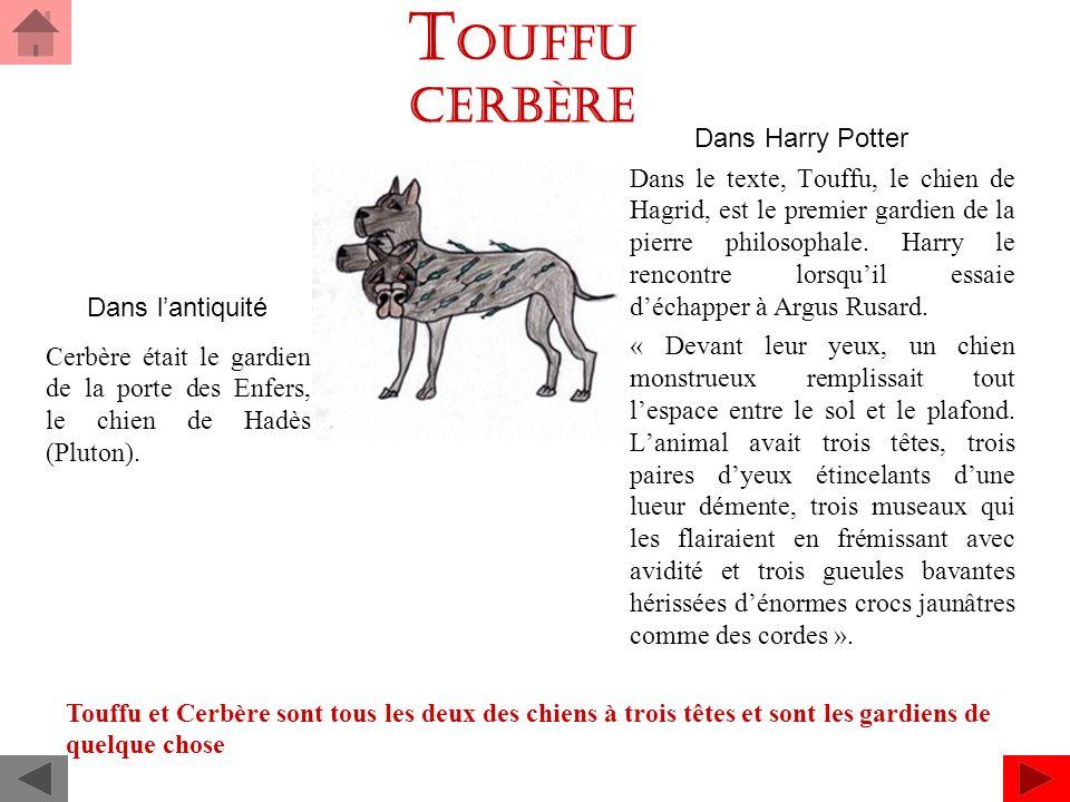 TOUFFU Cerbère Dans Harry Potter