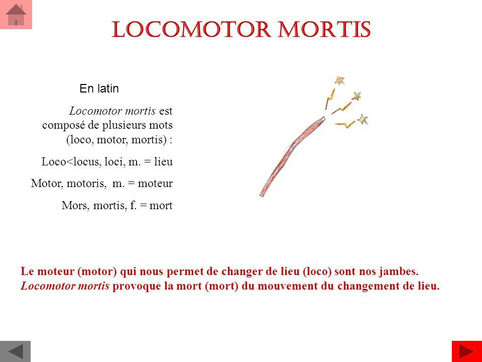 Locomotor mortis En latin