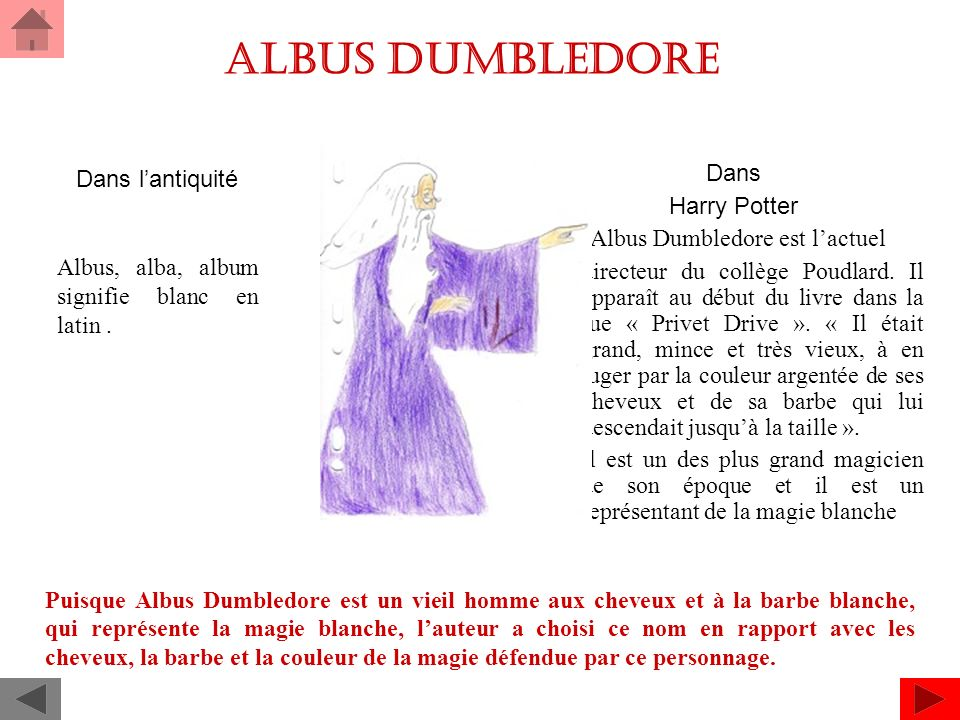 ALBUS Dumbledore Dans Dans l'antiquité Harry Potter