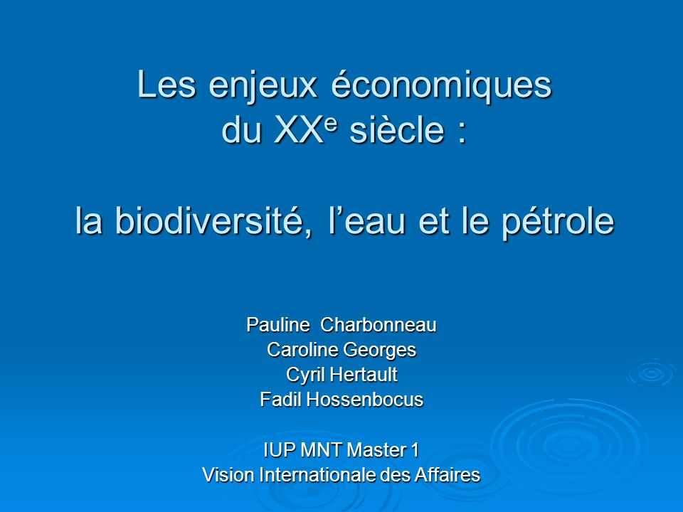 Vision Internationale des Affaires