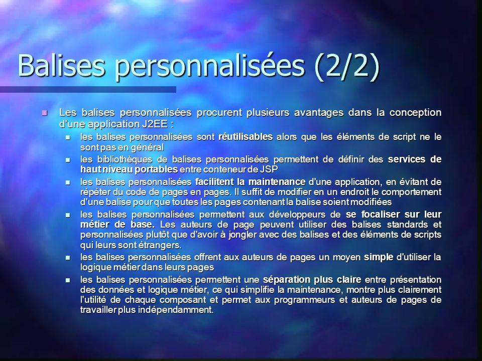 Balises personnalisées (2/2)