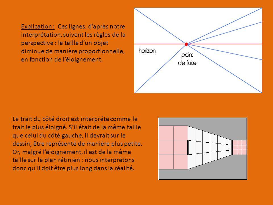 Explication : Ces lignes, d'après notre interprétation, suivent les règles de la perspective : la taille d'un objet diminue de manière proportionnelle, en fonction de l'éloignement.