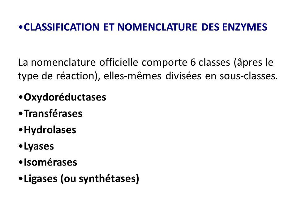 CLASSIFICATION ET NOMENCLATURE DES ENZYMES