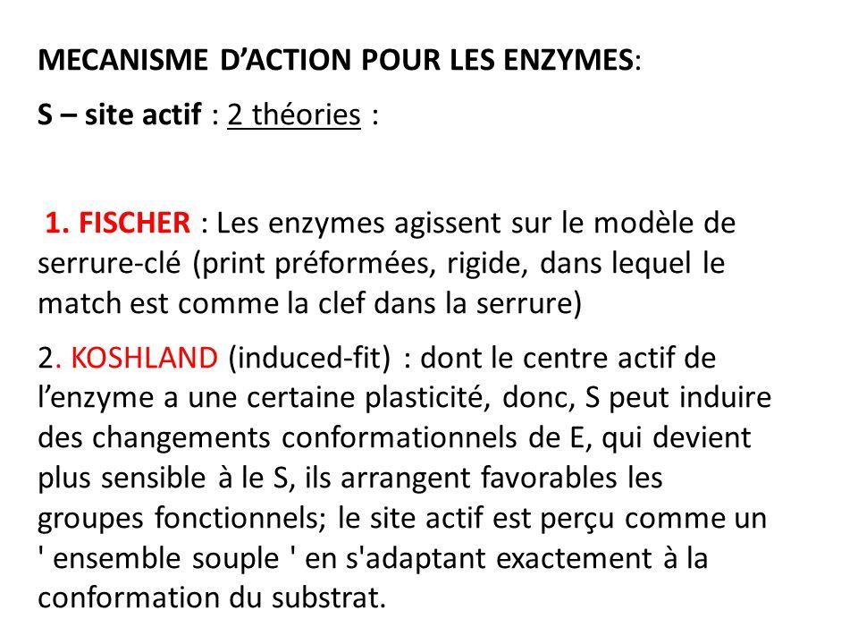 MECANISME D'ACTION POUR LES ENZYMES: