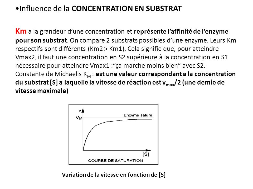 Influence de la CONCENTRATION EN SUBSTRAT