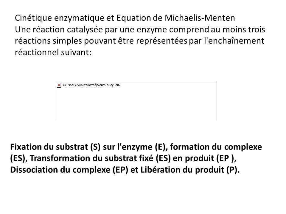 Cinétique enzymatique et Equation de Michaelis-Menten