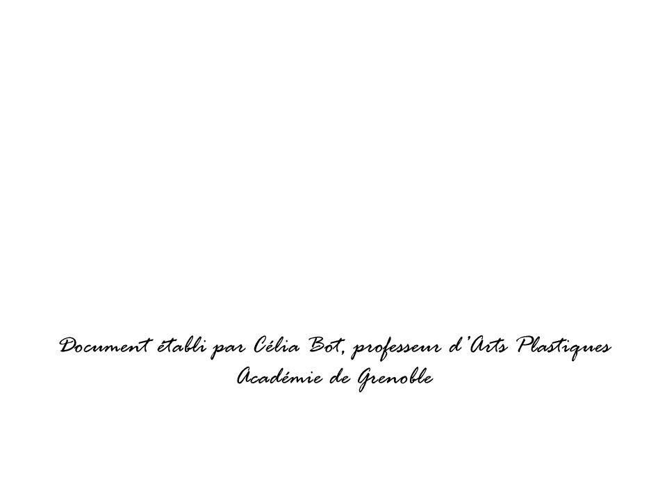 Document établi par Célia Bot, professeur d'Arts Plastiques Académie de Grenoble