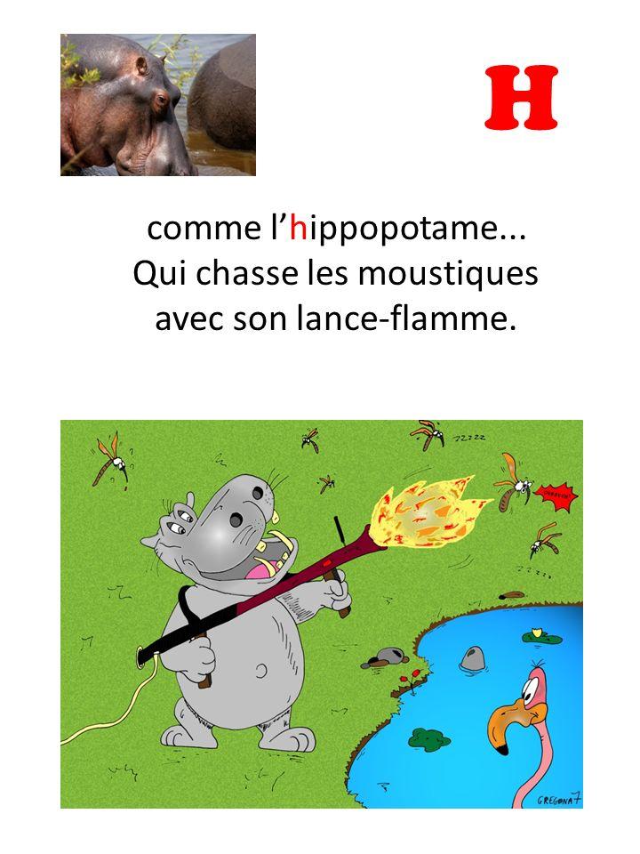 H comme l'hippopotame... Qui chasse les moustiques avec son lance-flamme.