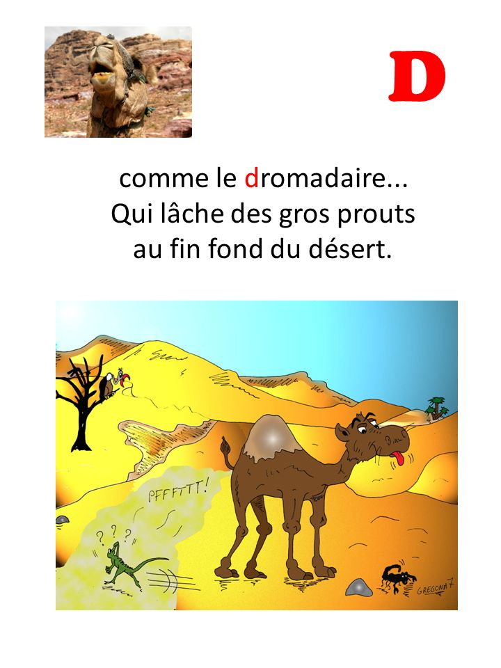 D comme le dromadaire... Qui lâche des gros prouts au fin fond du désert.
