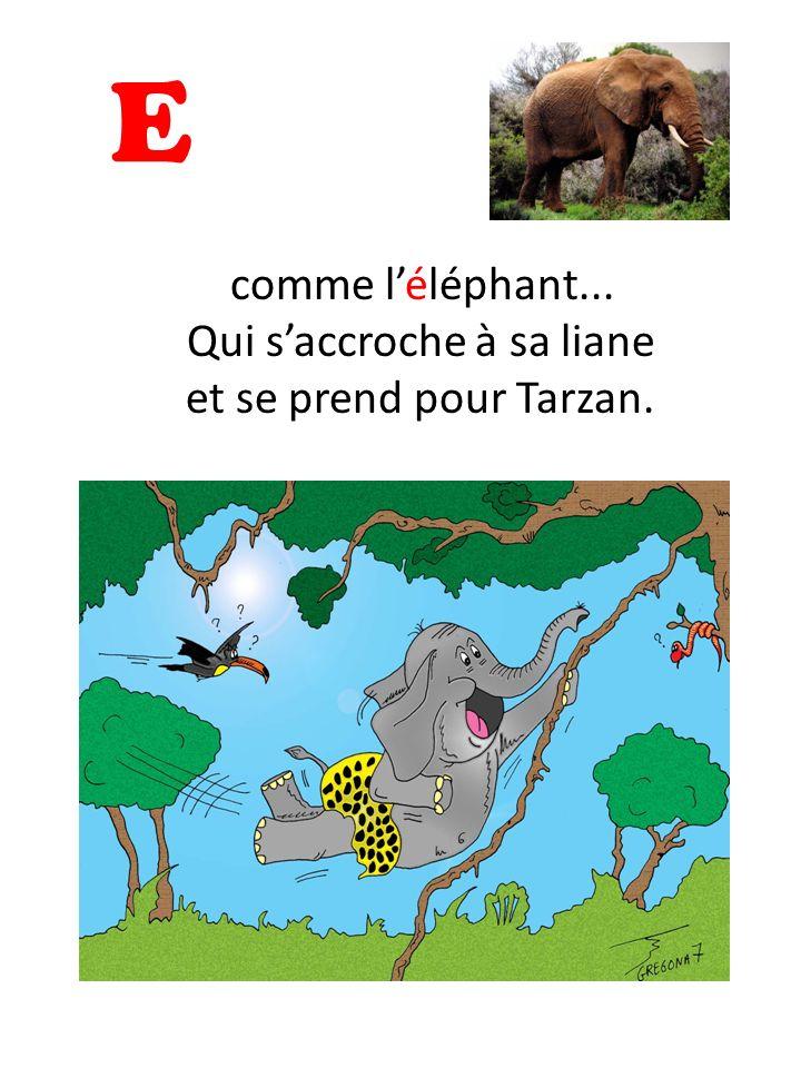 comme l'éléphant... Qui s'accroche à sa liane et se prend pour Tarzan.