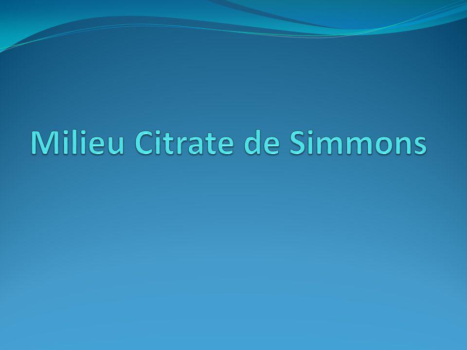 Milieu Citrate de Simmons