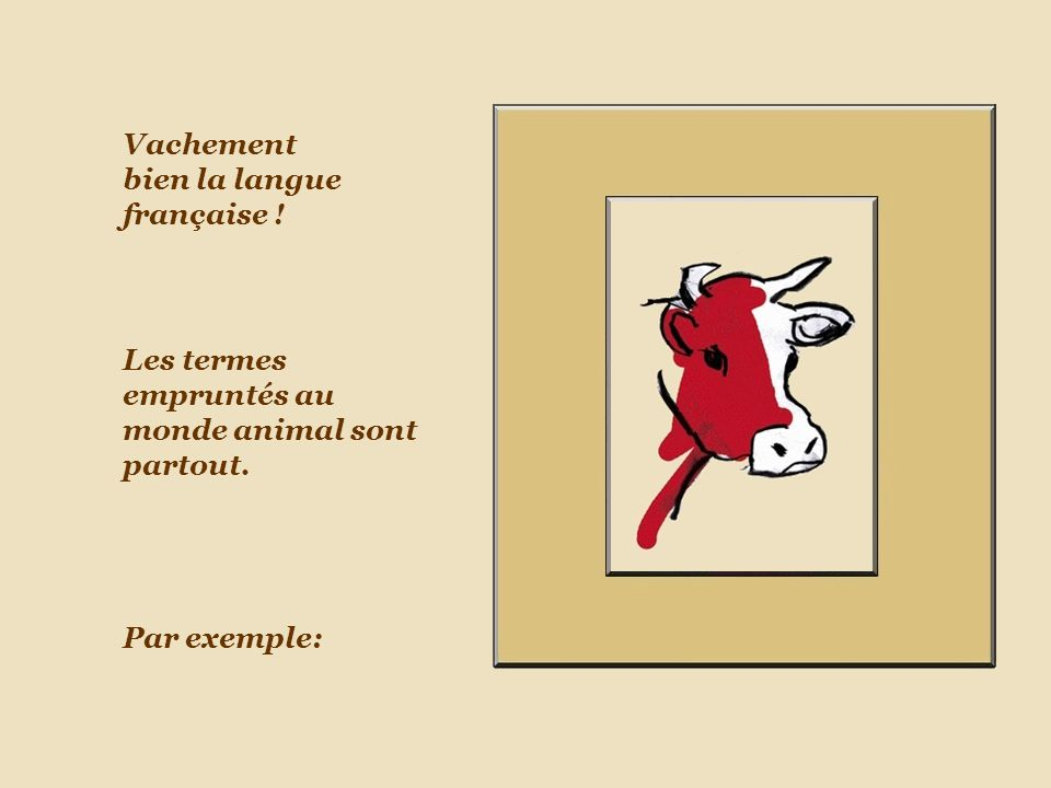 Vachement bien la langue française !