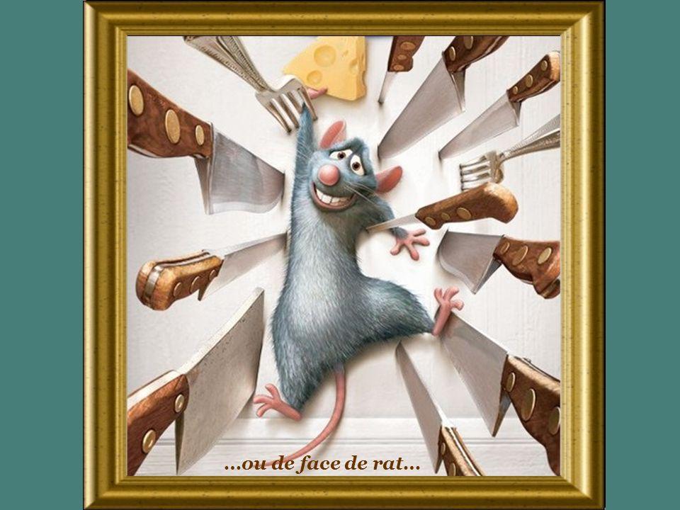 …ou de face de rat…