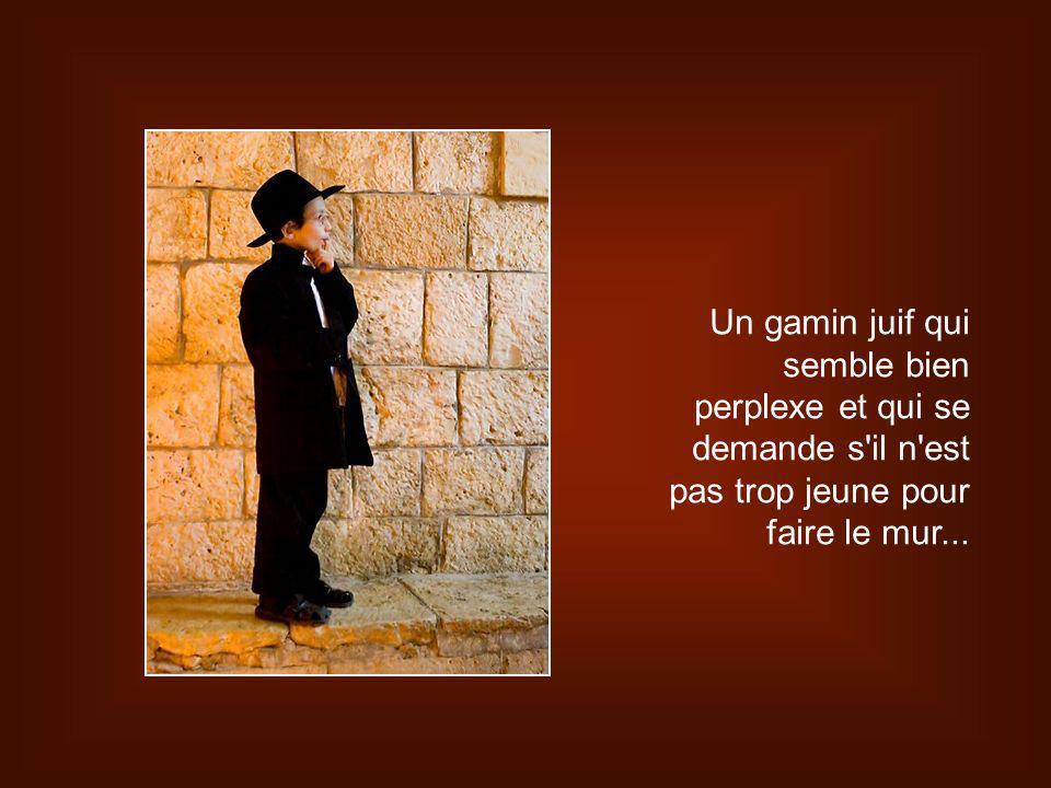 Un gamin juif qui semble bien perplexe et qui se demande s il n est pas trop jeune pour faire le mur...