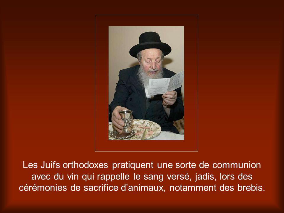 Les Juifs orthodoxes pratiquent une sorte de communion avec du vin qui rappelle le sang versé, jadis, lors des cérémonies de sacrifice d'animaux, notamment des brebis.