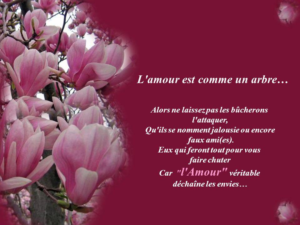 L amour est comme un arbre…