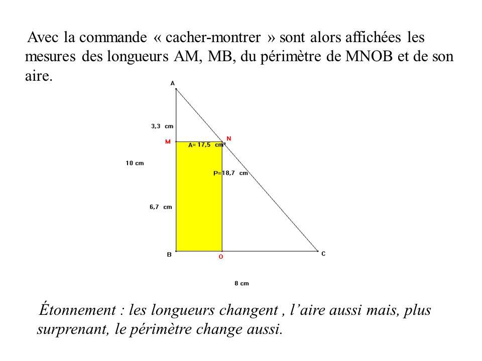 Avec la commande « cacher-montrer » sont alors affichées les mesures des longueurs AM, MB, du périmètre de MNOB et de son aire.