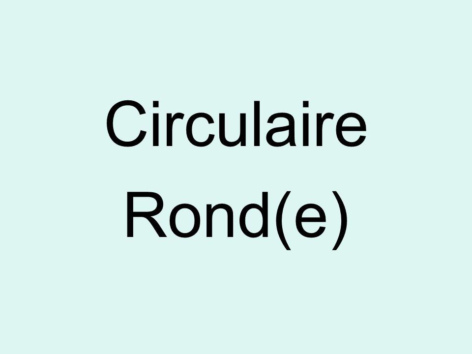 Circulaire Rond(e)