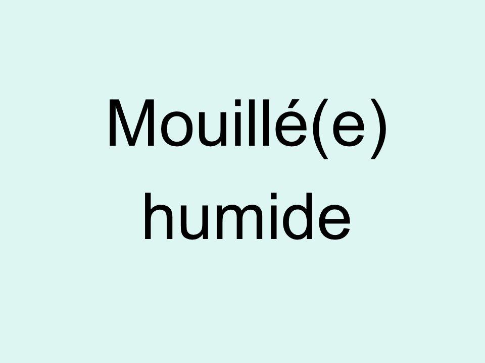 Mouillé(e) humide