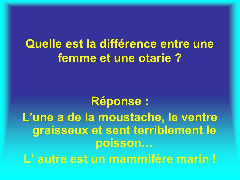 Quelle est la différence entre une femme et une otarie