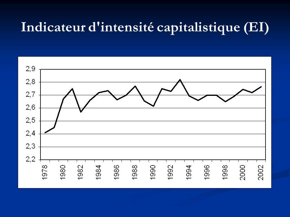 Indicateur d intensité capitalistique (EI)