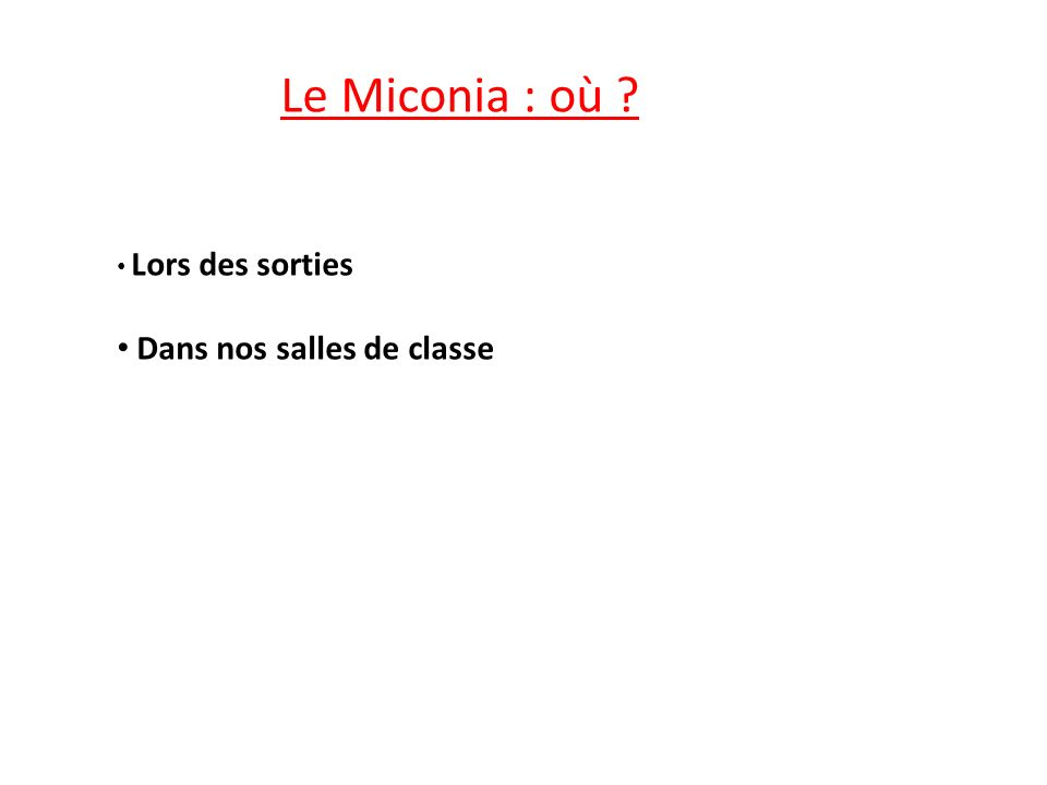Le Miconia : où Lors des sorties Dans nos salles de classe