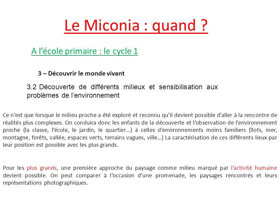 Le Miconia : quand A l'école primaire : le cycle 1