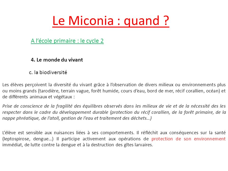 Le Miconia : quand A l'école primaire : le cycle 2