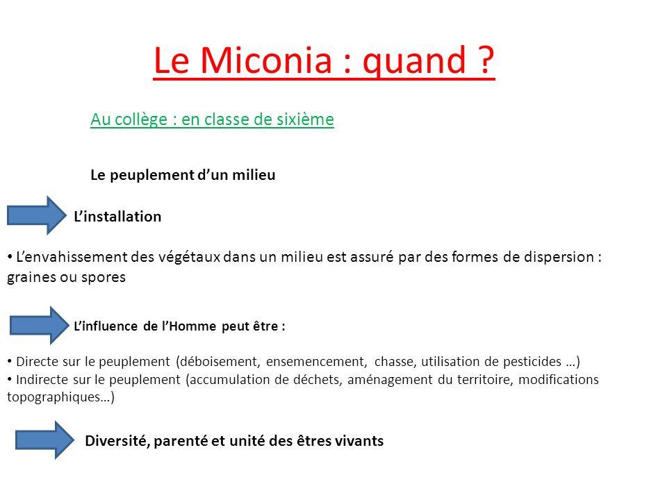 Le Miconia : quand Au collège : en classe de sixième