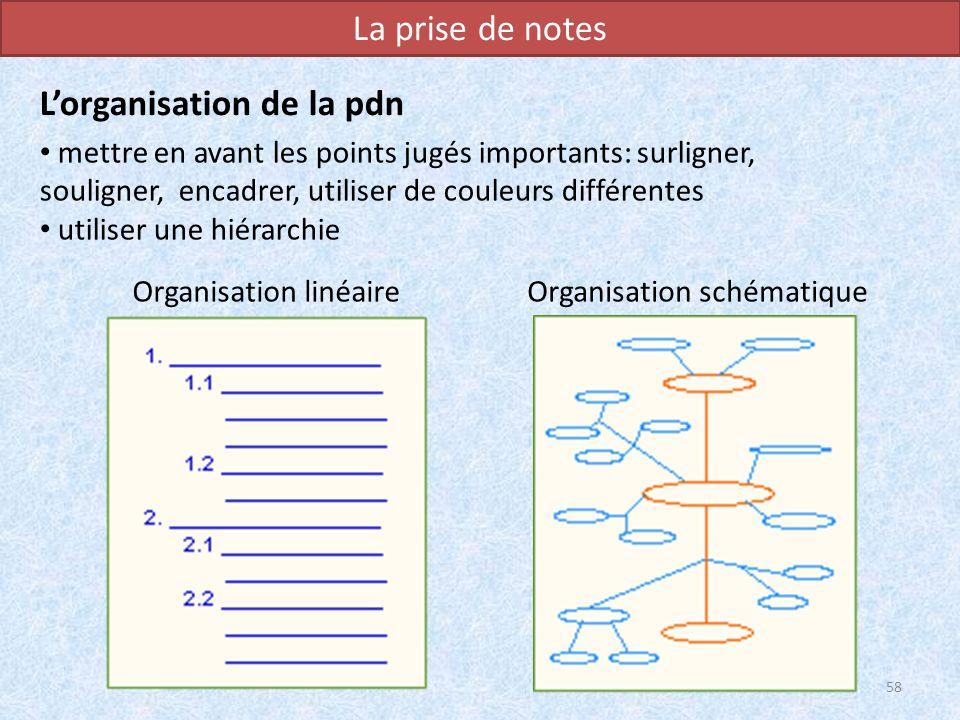 Organisation linéaire