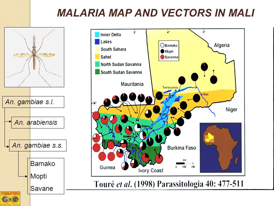 MALARIA MAP AND VECTORS IN MALI