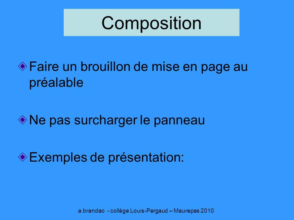 a.brandao - collège Louis-Pergaud – Maurepas 2010