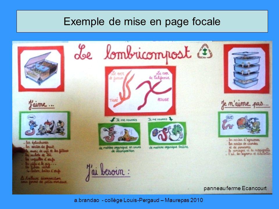 Exemple de mise en page focale