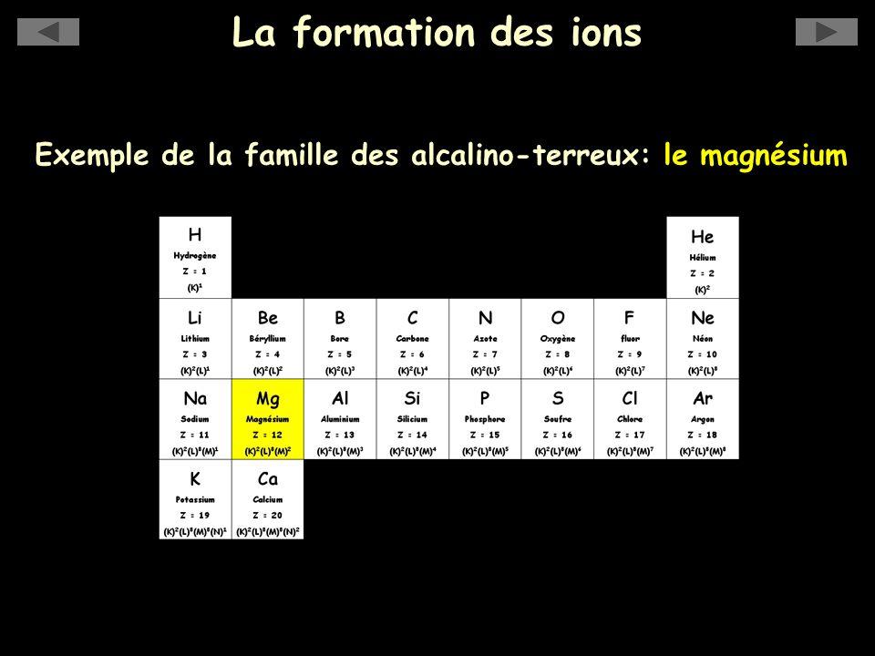 Exemple de la famille des alcalino-terreux: le magnésium