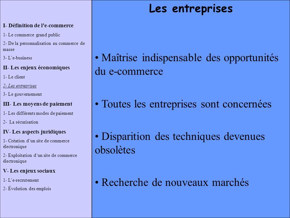 Maîtrise indispensable des opportunités du e-commerce