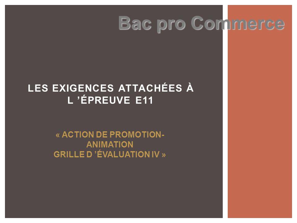 LES EXIGENCES ATTACHÉES À L 'ÉPREUVE E11