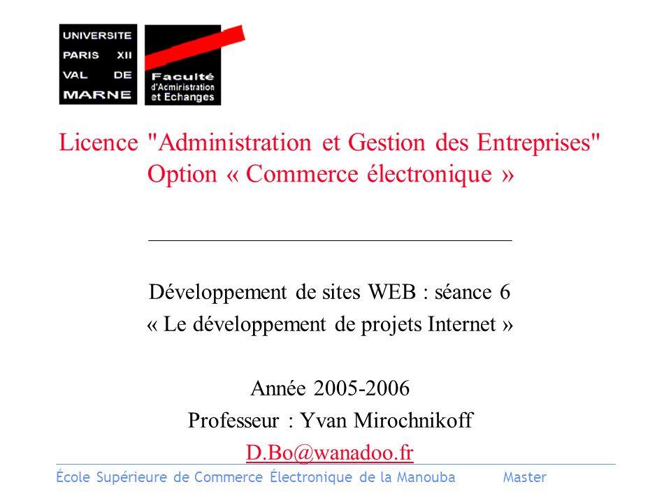 Licence Administration et Gestion des Entreprises Option « Commerce électronique »