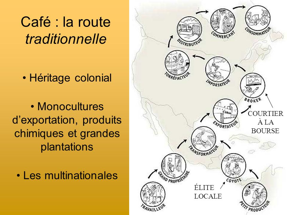 Café : la route traditionnelle